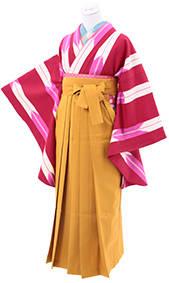 赤矢がすり(No: 2630) / 京都五条きものKIKYO - 卒業式と成人式の袴レンタル日本最大級の情報サイト (23044)