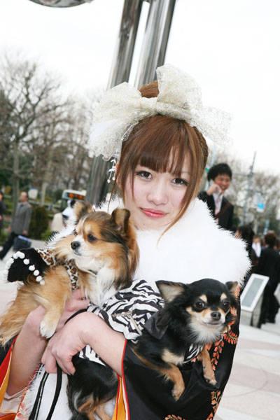No.005 でこ | ふりそで美女スタイル〜振袖BeautyStyle〜 (24534)