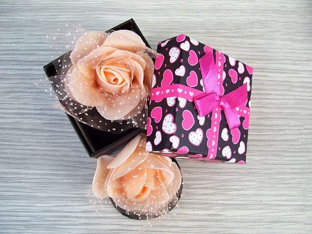 Free photo: Box, Rose, Gift, Elastic Hair - Free Image on Pixabay - 1339989 (4844)