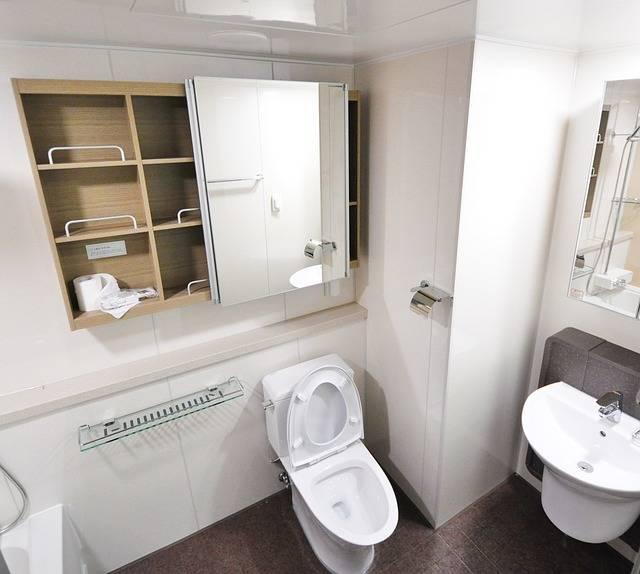 Free photo: Interior, Design, Home, Toilet - Free Image on Pixabay - 1822511 (24690)