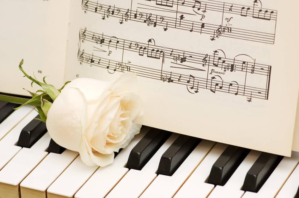 白いバラと楽譜