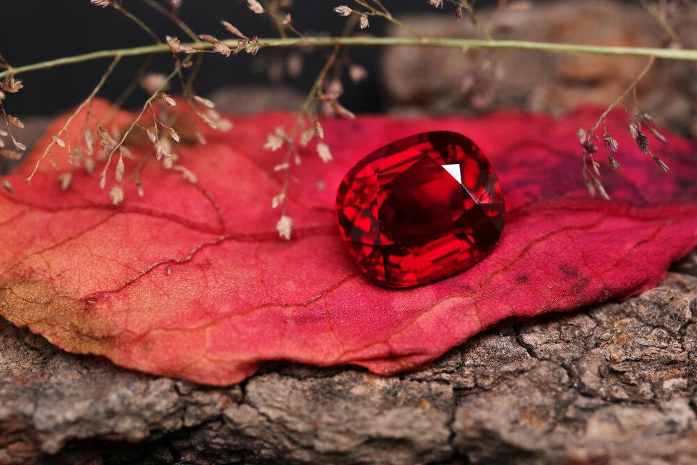 赤い葉とルビー