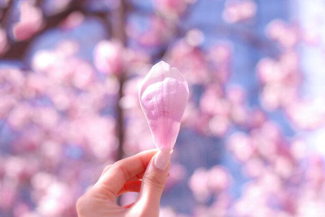 【ALL2,000円以下】メイクで春先取りしちゃお!プチプラ春コスメ2021♡