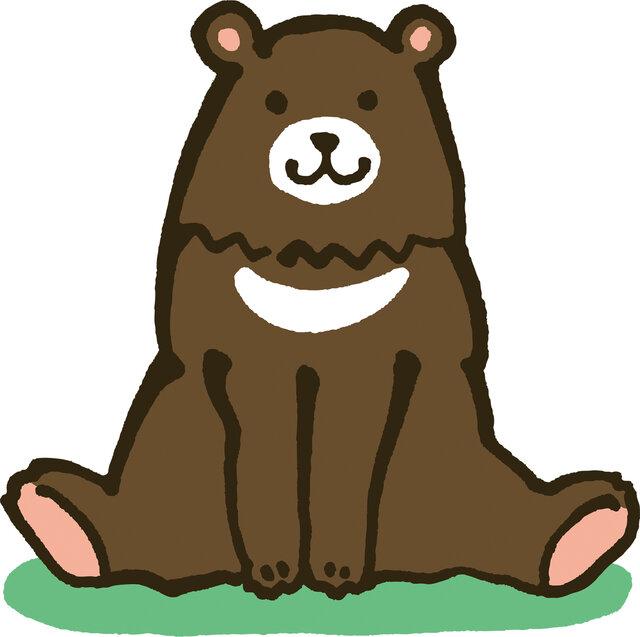 ニキビ肌を救うのは【熊の油】!? 効果や人気の種類をご紹介します!