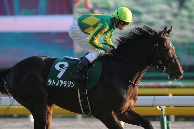 サトノアラジン(牡5・池江泰寿厩舎)