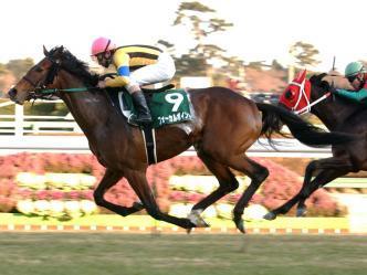 2004年1月18日 京成杯 芝2000m 中山競馬場