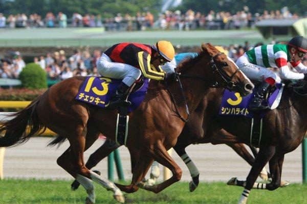 チェッキーノ(牝3・藤沢和雄厩舎)