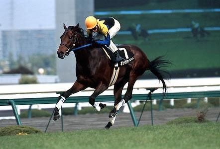 2004年2月29日 すみれS 芝2200m 阪神競馬場