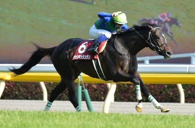 2016年の日本競馬