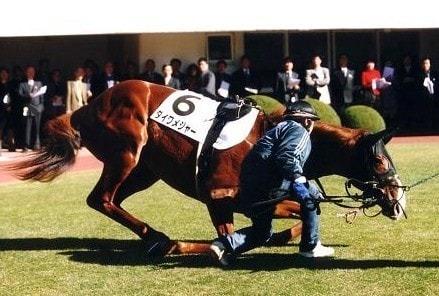 2003年12月28日 新馬戦 芝1600m 中山競馬場
