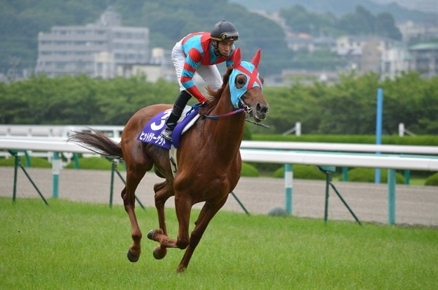 ▲ヒットザターゲット(牡8・加藤敬二厩舎)