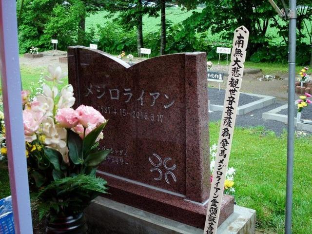 メジロライアン号の墓石