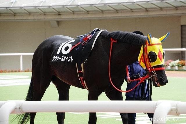 2着馬:ラヴァーズポイント(牝6歳)