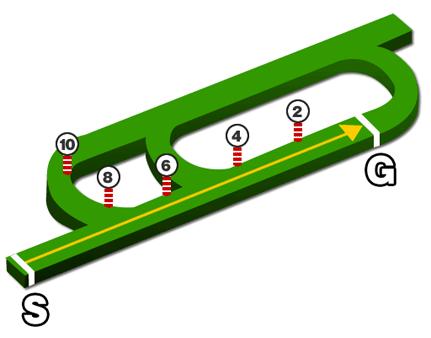 新潟競馬場・芝1000mコース図