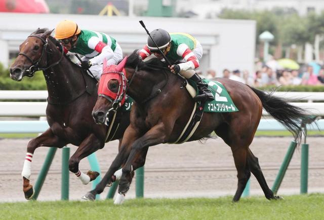 勝ち馬:マコトブリジャール(牝6歳)