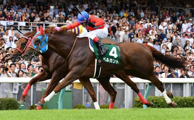 勝ち馬:ベルカント(牝5歳)