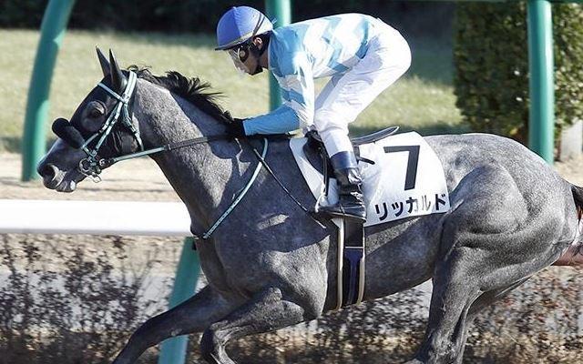 勝ち馬:リッカルド(セ5歳)