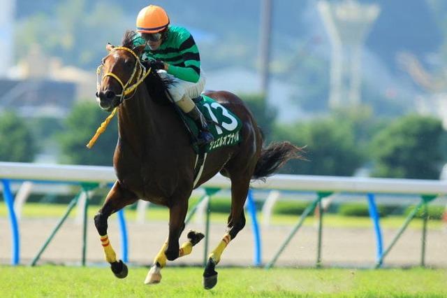 2009年9月6日 小倉2歳ステークス 芝1200m ...