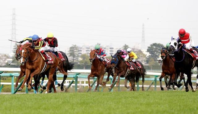 2013年の産経大阪杯