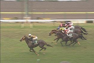 2006年11月11日 福島記念 芝2000m 福島競馬場