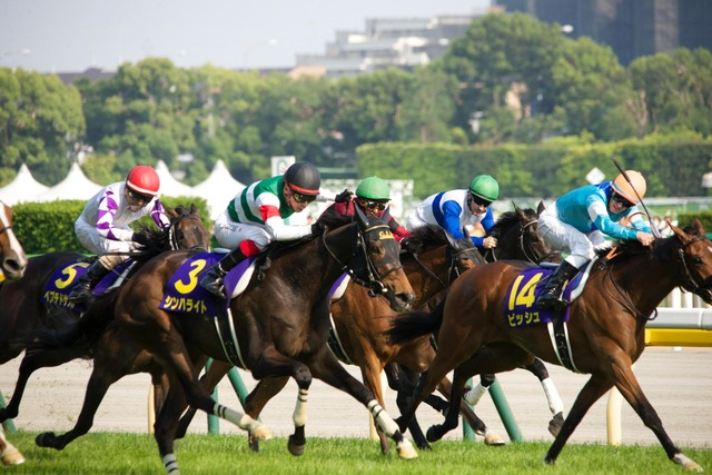2016年優駿牝馬(オークス)