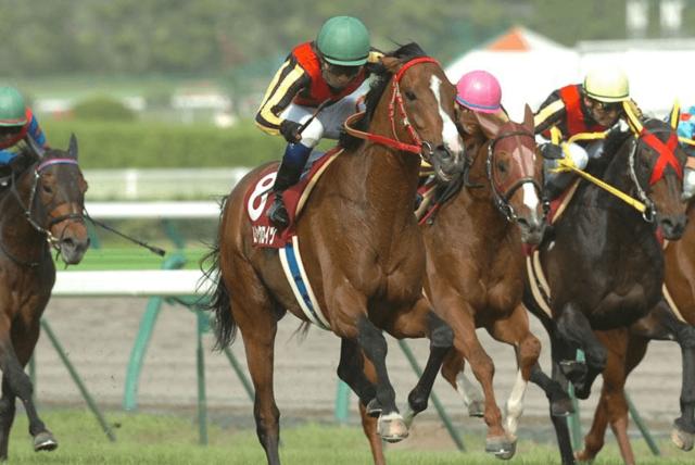 2007年5月26日 金鯱賞 芝2000m 中京競馬場