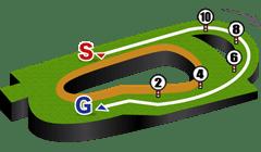 阪神競馬場、芝1600m外回りコース図