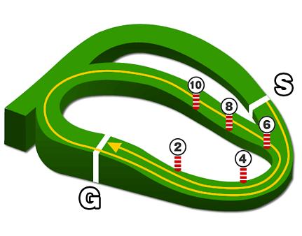 中山競馬場、芝2500mコース図