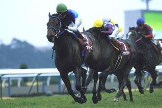 2007年02月17日 京都記念 芝2200m 京都競馬場
