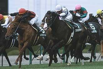 2007年02月25日 阪急杯 芝1400m 阪神競馬場