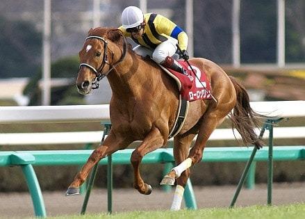 2007年02月25日 中山記念 芝1800m 中山競馬場