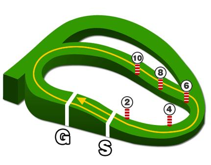 中山競馬場、芝1800mコース図