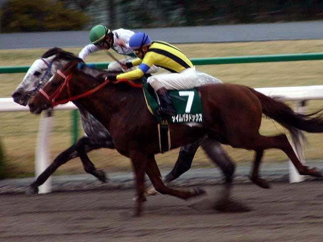 2004年01月25日 平安ステークス ダート1800...
