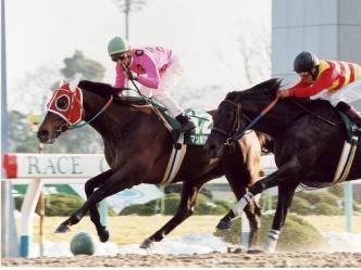 2001年01月21日 平安ステークス ダート1800...