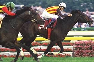 2007年05月27日 目黒記念 芝2500m 東京競馬場