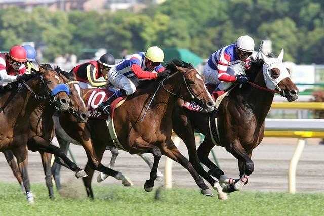 2005年05月21日 目黒記念 芝2500m 東京競馬場