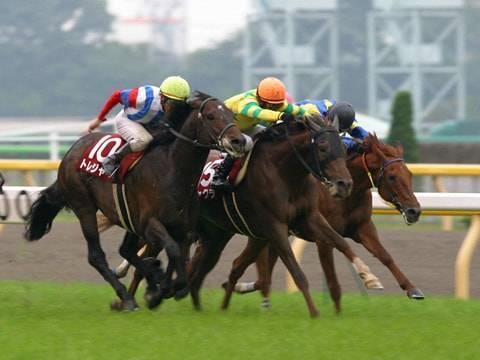 2004年5月22日 目黒記念 芝2500m 東京競馬場