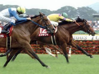 2003年05月24日 目黒記念 芝2500m 東京競馬場