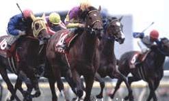 2002年05月18日 目黒記念 芝2500m 東京競馬場