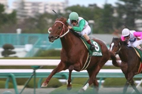 2005年12月11日 鳴尾記念 芝2000m 阪神競馬場