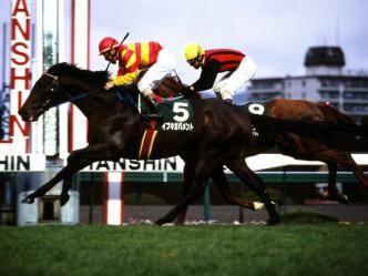 2002年12月08日 鳴尾記念 芝2000m 阪神競馬場