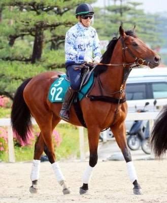 見栄えのする馬体でトレセン内でも注目を集める