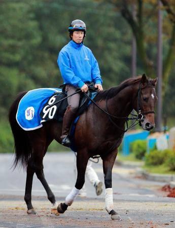 馬体は既に大物の雰囲気を醸し出すトゥザクラウン