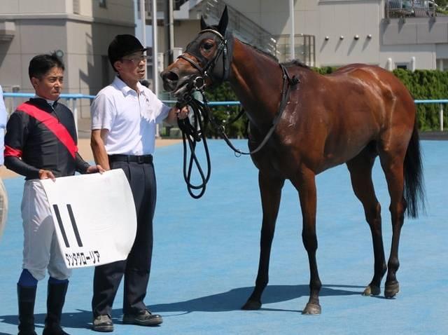 前走は400kgちょうどの馬体重だったタンタグローリア