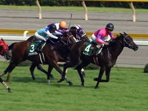 2003年08月03日 関屋記念 芝1600m 新潟競馬場