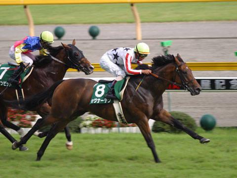 2002年07月28日 関屋記念 芝1600m 新潟競馬場