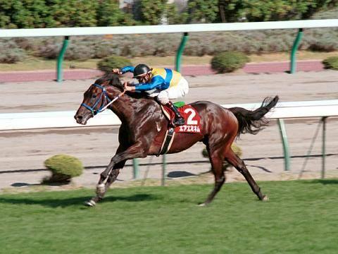2001年08月19日 札幌記念 芝2000m 札幌競馬場