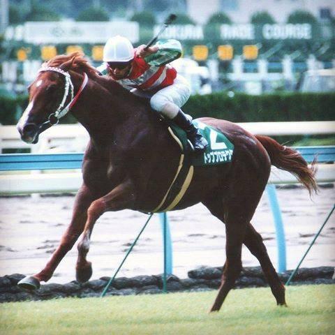 2002年07月14日 北九州記念 芝1800m 小倉競馬場