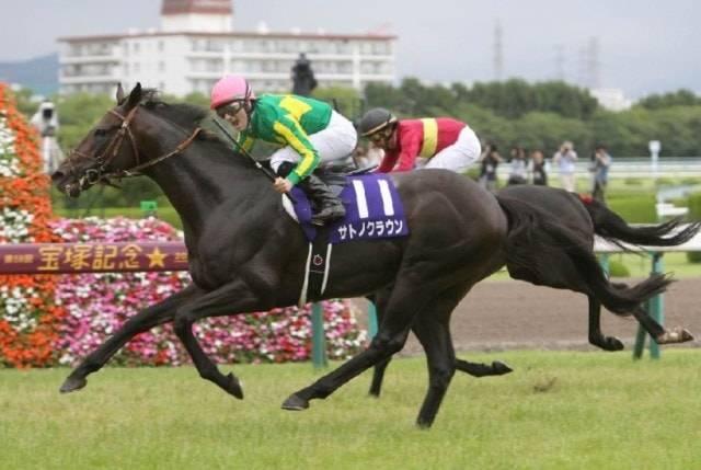 サトノクラウン(ジョコンダⅡ2012)