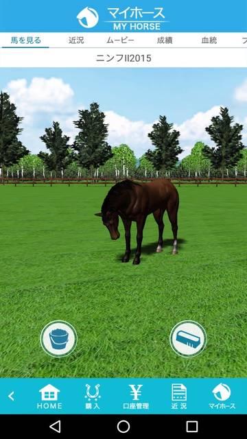 所有を表す1頭の馬…どうせ、全部同じでしょw